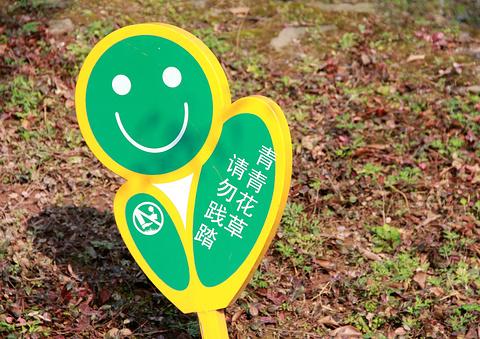 大寨子公园旅游景点攻略图