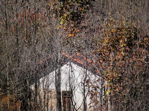 桃花冲森林公园旅游景点图片