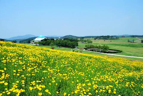 木兰草原景区