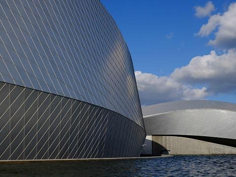 丹麦国立水族馆旅游景点图片