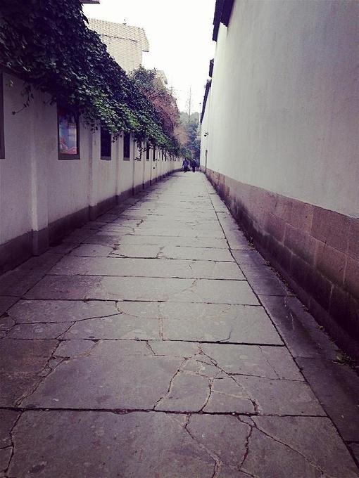 元宝街的美景图片