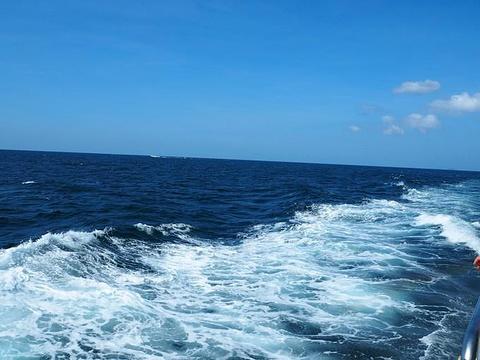 通赛湾旅游景点攻略图