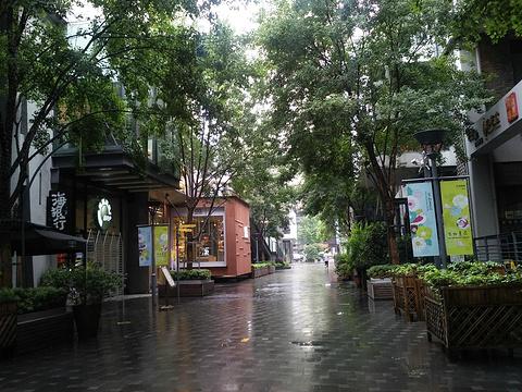 花园道旅游景点图片