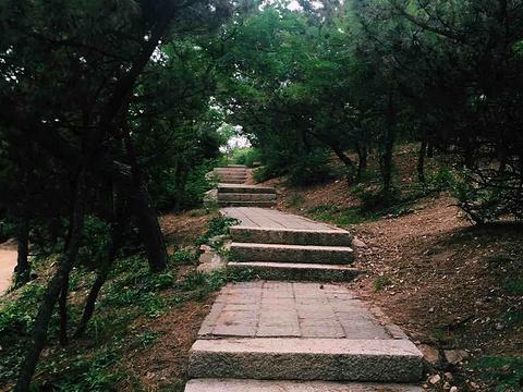 北岭山森林公园旅游景点图片