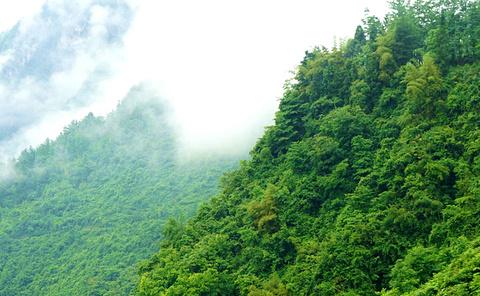 枣庄熊耳山