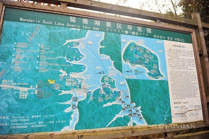 """""""而婺源联票中的鸳鸯湖就在这里,索性进去看一眼,但事实证明,这个景点颇为鸡肋,大部分来这里的是想..._鸳鸯湖""""的评论图片"""