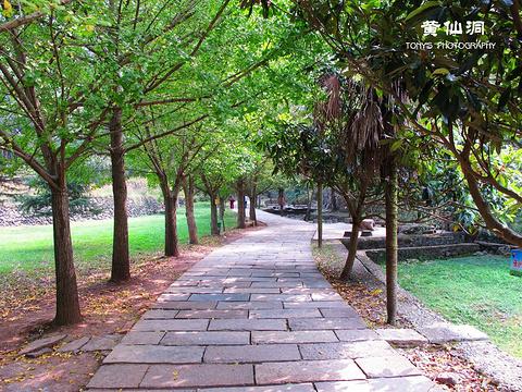 黄仙洞景区旅游景点图片
