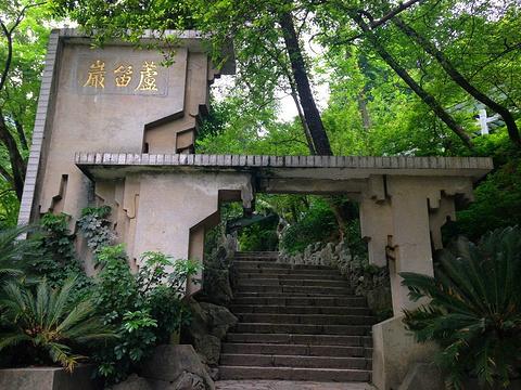 芦笛岩的图片