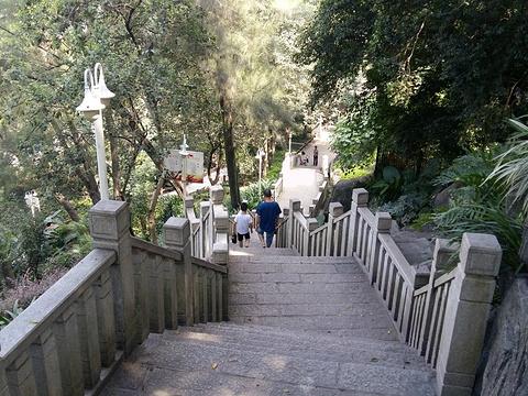 罗星公园旅游景点图片