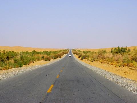 塔克拉玛干沙漠(巴音郭楞)旅游景点图片