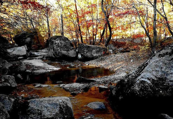 境,万景奇山 天华山国家森林公园评论 去哪儿攻略社区