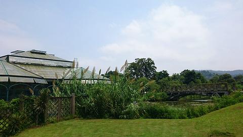 中国科学院华南植物园旅游景点攻略图