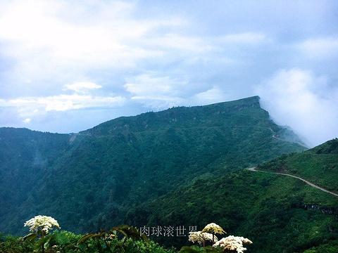 云海人家旅游景点图片
