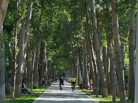 奎屯西公园旅游景点图片