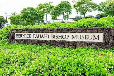 毕夏普博物馆旅游景点攻略图