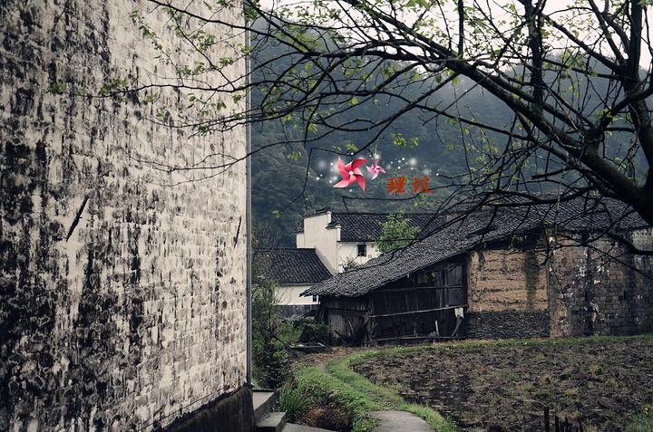 """""""格格最喜欢拍照的特点:拍漂亮的风景,把自己拍的小小的或者背影,很自然的那种,总之照片中看不来是..._理坑""""的评论图片"""