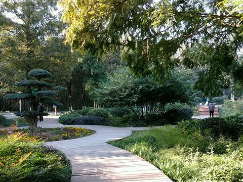 相山公园旅游景点图片