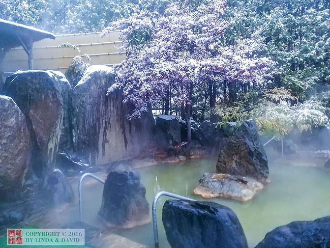 汤本白金温泉酒店(Yumoto Shirogane-Onsen Hotel)图片