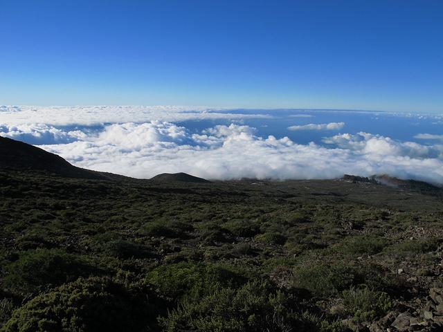 """""""火山留下的大片红土形成如同火星般的特殊地貌。在茂宜岛我们租的是""""推荐配置""""敞篷野马_哈雷阿卡拉国家公园""""的评论图片"""