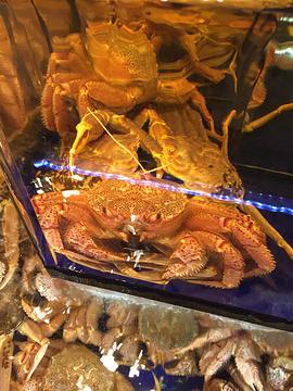 蟹道乐(道顿堀店)旅游景点攻略图