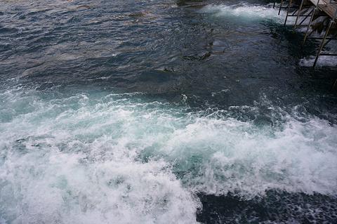金针水坝旅游景点攻略图