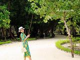 曼德芙仕岛旅游景点攻略图片