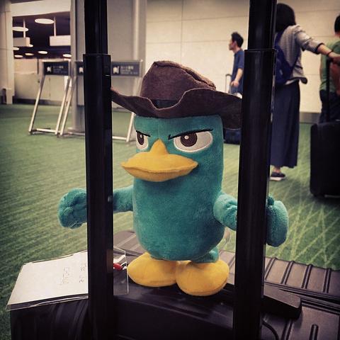 到达日本羽田机场了!在等行李中… 我们的新友