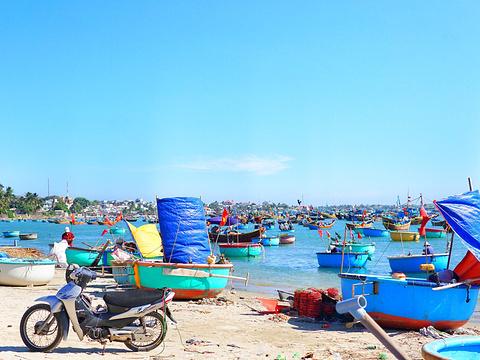 美奈渔村旅游景点图片