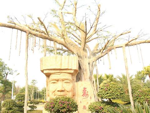 柳州园博园旅游景点图片