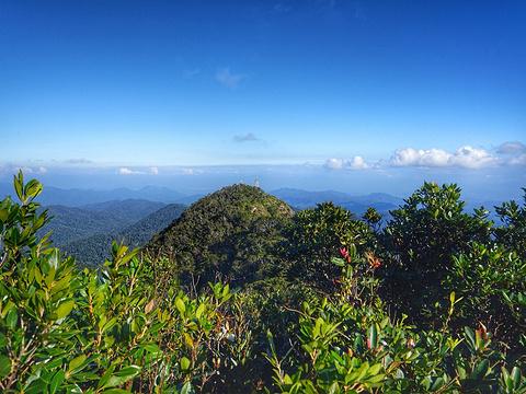 尖峰岭国家森林公园旅游景点图片