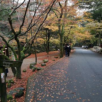 Mizuyachaya旅游景点攻略图