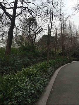 成都动物园旅游景点攻略图