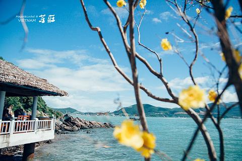 妙岛的图片