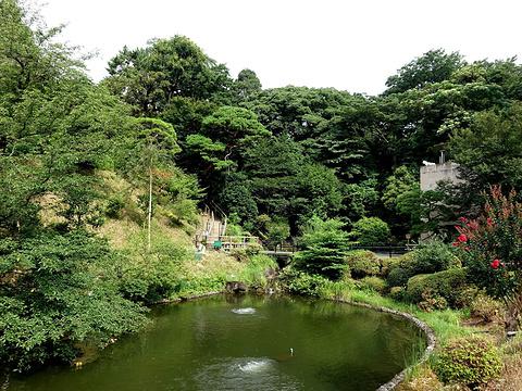 椿山庄旅游景点图片
