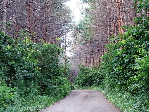 西山公园旅游景点图片