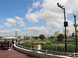 盐城旅游景点攻略图片