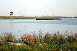 石嘴山星海湖