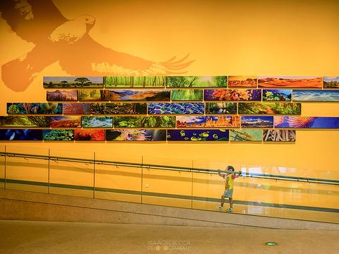 上海自然博物馆(静安新馆)旅游景点图片