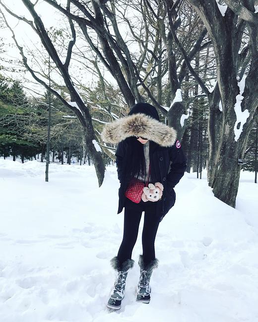 の北海道 北国冬日的一封情书_函馆旅游攻略_