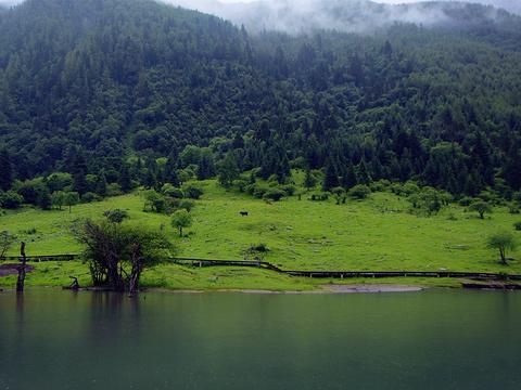 盆景滩旅游景点图片