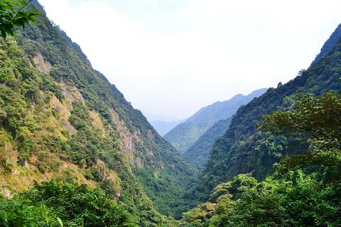旗山国家森林公园旅游景点攻略图