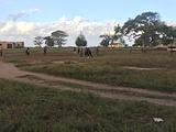 莫桑比克旅游景点攻略图片