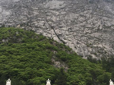 扎如寺旅游景点图片