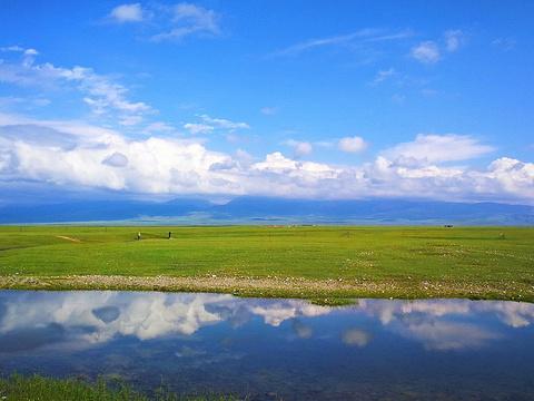 巴音布鲁克草原旅游景点图片