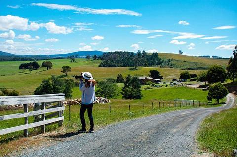布莱德斯托薰衣草农场旅游景点攻略图