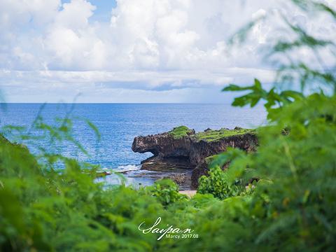 鳄鱼头海滩旅游景点图片