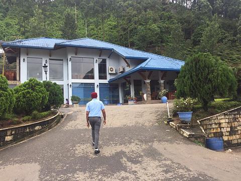 蓝房子茶厂旅游景点攻略图