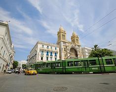 穿行在阳光下的72小时--致茉莉芬芳中的突尼斯城