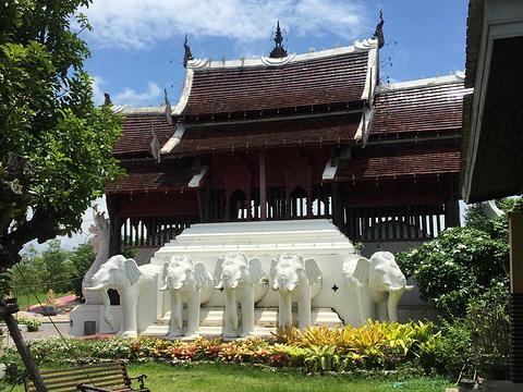 拉查帕皇家花园旅游景点图片