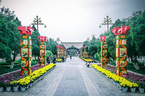 龙亭公园的图片